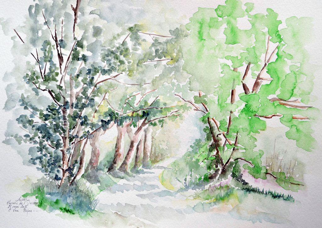 à l'aquarelle, un  chemin encadré de haies d'arbres
