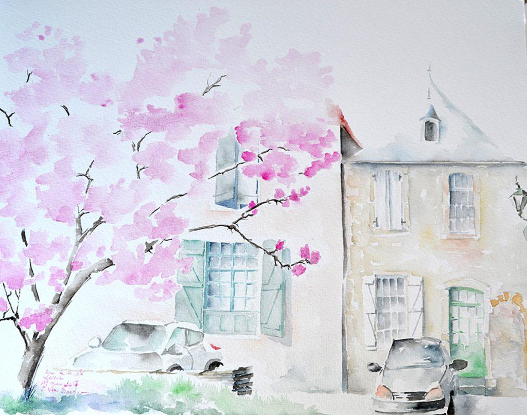à l'aquarelle, un magnolia (en partie), derrière des maisons