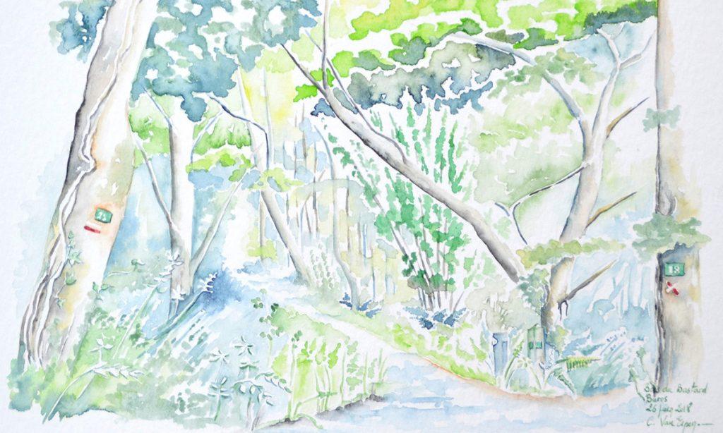 à l'aquarelle, entrée dans un bois verdoyant. sur le premier arbre de gauche, le basiage du GR, sur la gauche, on devine la borne du chemin de compostelle