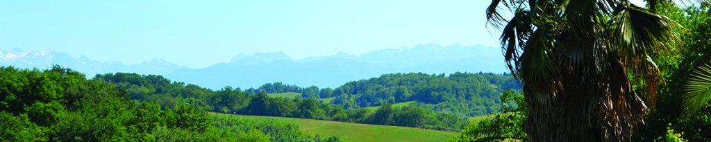 chaîne des pyrénées, vue depuis le domaine Vignau