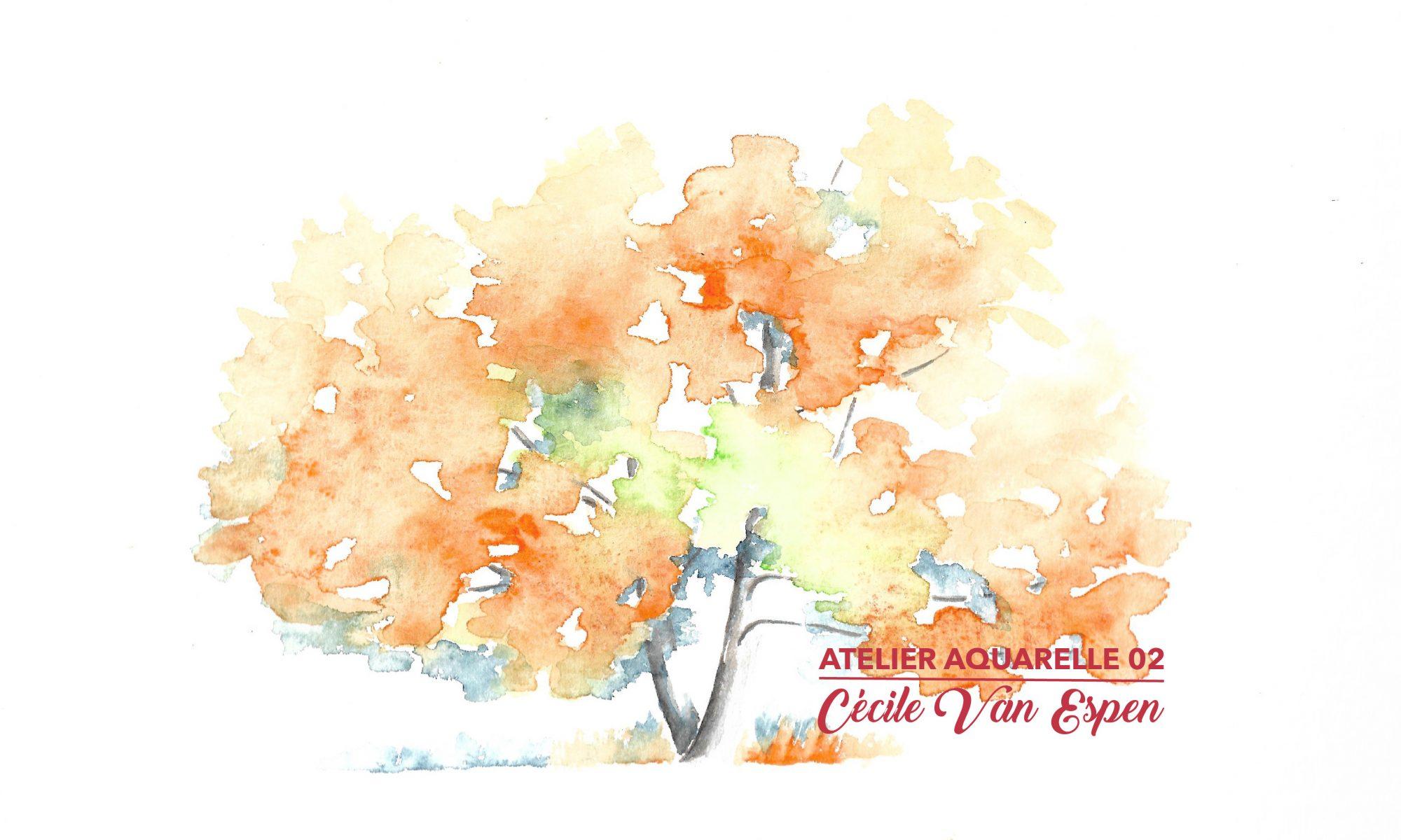 Chêne rouge d'amérique, feuillage dans les oranges