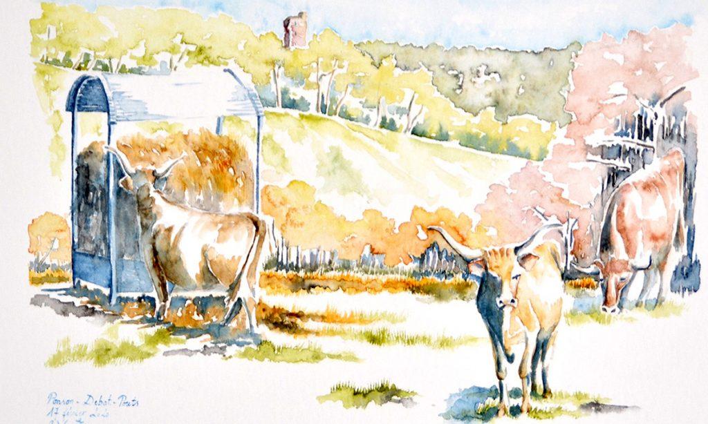 A droite, en premier plan, une vache béarnaise arrive droit sur vous. Plus en retrait, tout à droite, une autre vache broute, elle est de face. Sur la gauche, sur un plan intermédiaire, une vache béarnaise prend du foin dans un distributeur. Elle est de dos. Derrière et au dessus des coteaux boisés, et quasi au centre gauche, une tour en briques rouges. L'aquarelle est dans des tonalités de fin d'hiver, début de printemps, ocre / doré avec des reflets roses ou vert